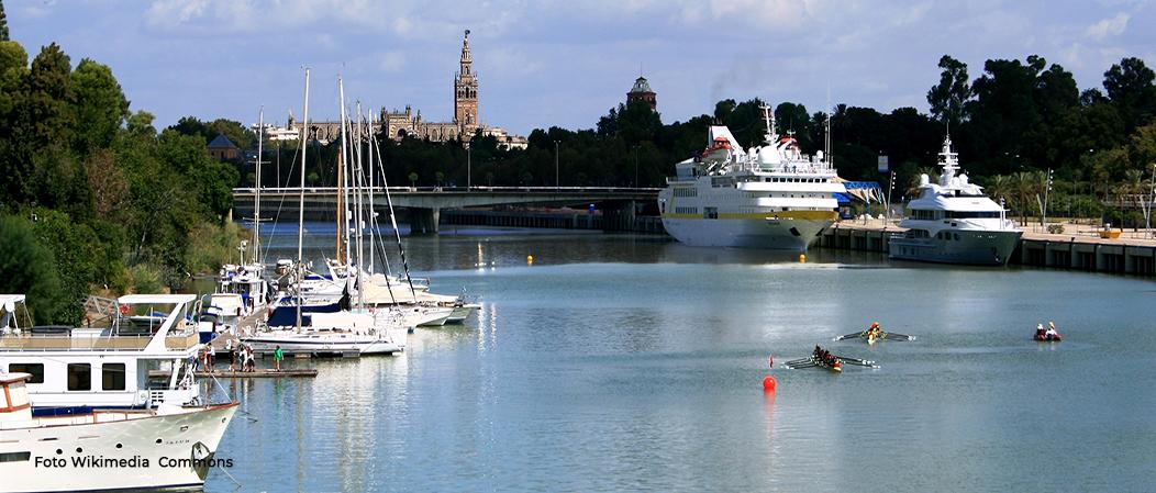Limpieza del Puerto de Sevilla